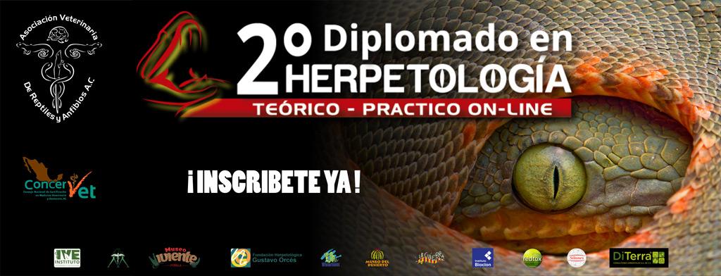 Diplomado Herpetología